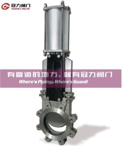 Lug Type Pneumatic Knife Gate Valve pictures & photos