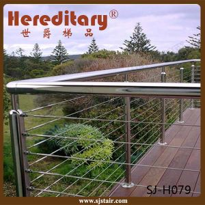 Stainless Steel Baluster in Balcony Railing (SJ-H079) pictures & photos