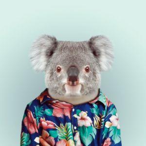 Cute Koala Oil Painting