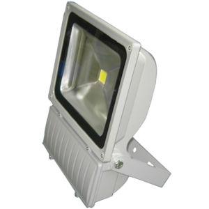 Factory Lighting Fixture 100W COB LED Flood Light pictures & photos