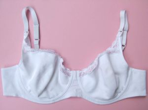 Embroidery Lace Satin Soft Cup Underwire Bra pictures & photos