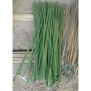 Natural Decorative Bamboo and Color Bamboo pictures & photos