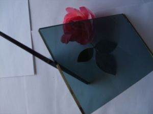Europe Grey Laminated Glass pictures & photos