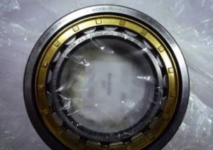 Cylindrical Roller Bearing NSK Nj340m China Manufacturer Original Bearing pictures & photos