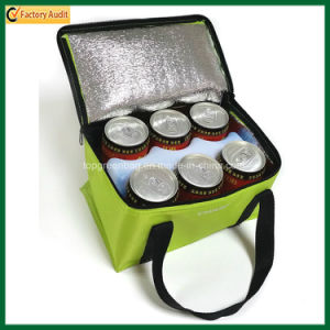 Popular Outdoor Lunch Bag Insulated Can Cooler Bags (TP-CB369) pictures & photos