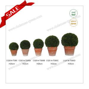 H20-35cm Beautiful Artificial Mini Artificial Plants Pot Flower pictures & photos