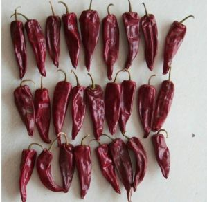 Hot Chili-Yidu Chili pictures & photos