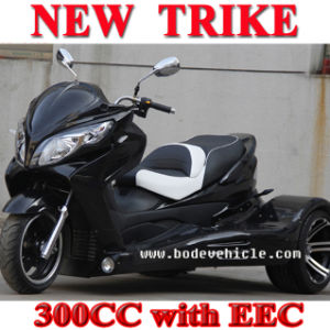 New Racing Trike ATV 250cc pictures & photos