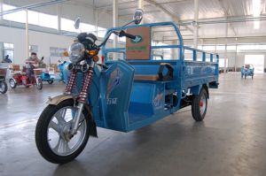 Three Wheel Freight Electric Tricycle pictures & photos
