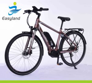 2017 New Design Electric Bicycle with Lithium Battery 700c pictures & photos