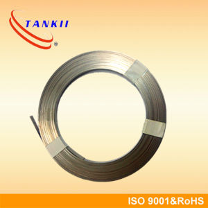 Pure Nickel Strip Ni200 for Lithium Battery pictures & photos