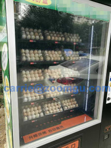 Automatic Conveyor Belt Vending Machine with Elevator Zg-D900-11g pictures & photos