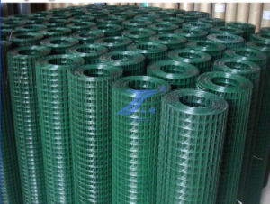 "1/3"" Galvanized Welded Wire Mesh Net (TS-WM08) pictures & photos"
