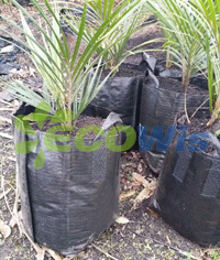 Durable Tree Root Grow Bag (HT5089) pictures & photos