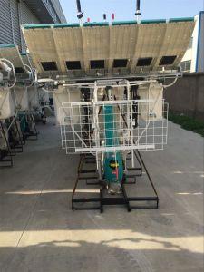 Rice Transplanter with Kubota Engine (model 2FMZS-6C, Kubota SPW68C rice transplanter standard) pictures & photos