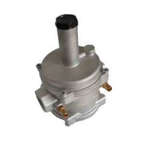 Natural Gas Filter Regulator for Boiler (MTGFR01) pictures & photos