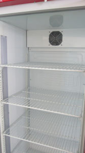 Refrigerating Showcase with Wentilated Fan Cooling (DBQ-318L) pictures & photos