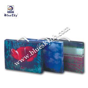 Cmyk Printing File Box (BLY10 - 2118 PP)