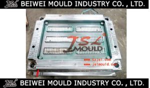 Heavy Duty Injection Plastic Storage Rack Mould pictures & photos