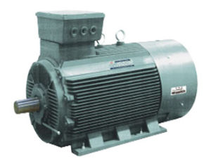 Y3 Series Three Phase Induction Electric Motors pictures & photos