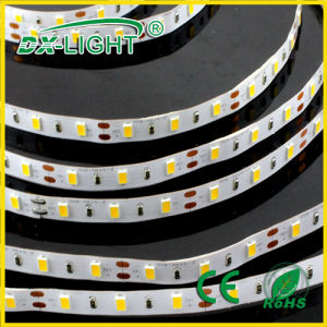 SMD 3014 LED Strip with CE& RoHS DC12V/DC24V 4lm/LED