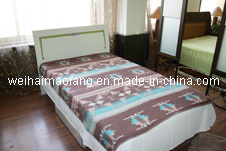 Wholesale of Soft Rayon/Viscose Blanket pictures & photos