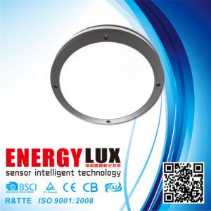 E-L40A Aluminium Die Casting Body E27 Outdoor Ceiling Light pictures & photos