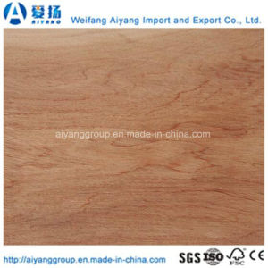 Custom Size Bintangor Plywood for Furniture and Decoration pictures & photos
