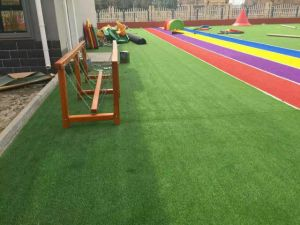 3 Color PE+PP Artificial Grass Wy-5 for Playgroud pictures & photos