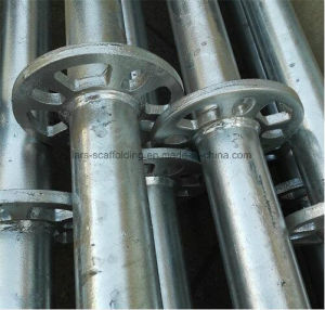 Factory Price Ringlock Scaffolding Standard for Sale pictures & photos