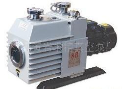 Vacuum Pump (2XZ-4B)