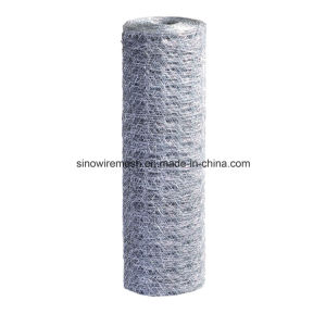 Sailin PVC Coated Hexagonal Wire Netting pictures & photos