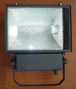 Flood Light Fixture (RH207)