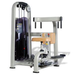 Good Quality Gym Equipment / Rotary Torso (SR11) pictures & photos