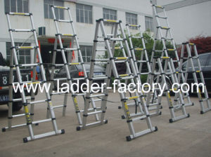 Double Telescopic Ladder (EN131/ PAHs/ BSCI/ REACH/ GS)
