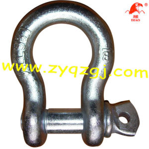 Us Type Screw Pin Anchor Shackle