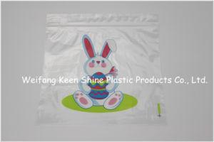 Customized Printed Zipper Bag/ Ziplock Bag pictures & photos