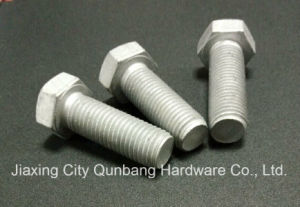 Heavy Hex Bolts (DIN 6914 M12-M36 Cl. 10.9) pictures & photos