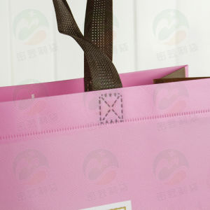 Top Sell Fashion Shopping Non Woven Bags Non Woven Bag (My-015) pictures & photos