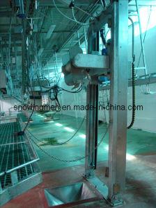 Sheep Slaughter Equipment: Skin Removed Machine