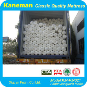 Rolled Foam Mattress, Fireproof Mattress for Prison pictures & photos