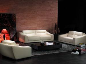 Leather Sofa (HD-161)