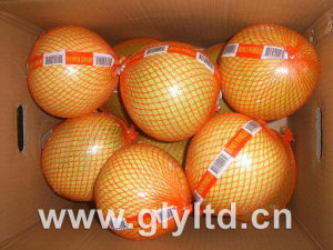Fresh Honey Pomelo 2015 Crop High Quality pictures & photos