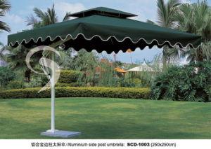 Umbrella (003)