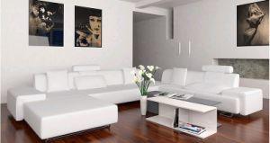 Leather Sofa (JJ163)