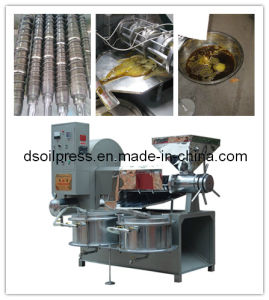 Soybean Oil Machine Seed Extractor (D-1685) pictures & photos
