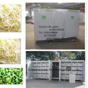 Animal Fodder Making Machine / Barley Sprout Machine pictures & photos