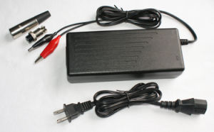 24V 2A Smart NiCd NiMH Battery Charger (RN100-24)