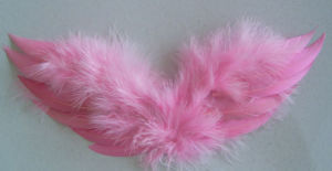 Feather Angel Wing-Small (C7-28*12)