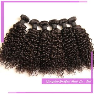 Wholesale New Hair Weft, Cheap Good Quality pictures & photos